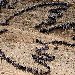 Día Internacional de laPaz