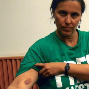 Eurodiputada española denunciará a Israel ante laCPI